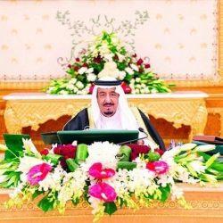أمر ملكي : خادم الحرمين ينيب ولي العهد في إدارة شؤون الدولة ورعاية مصالح الشعب