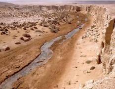 الصحراء الغريبة في مصر
