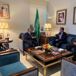 خادم الحرمين يدعو ملك البحرين لحضور اجتماع المجلس الأعلى للتعاون الخليجي